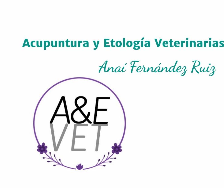 Acupuntura y Etología veterinarias
